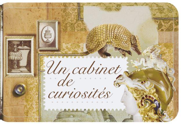 Carnet Un cabinet de curiosités