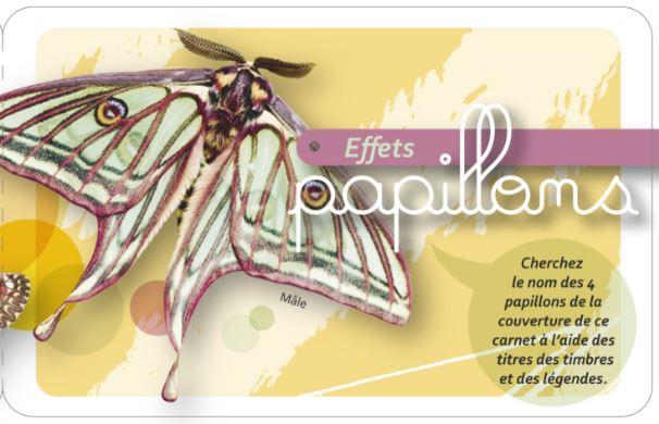 Carnet Effets papillons