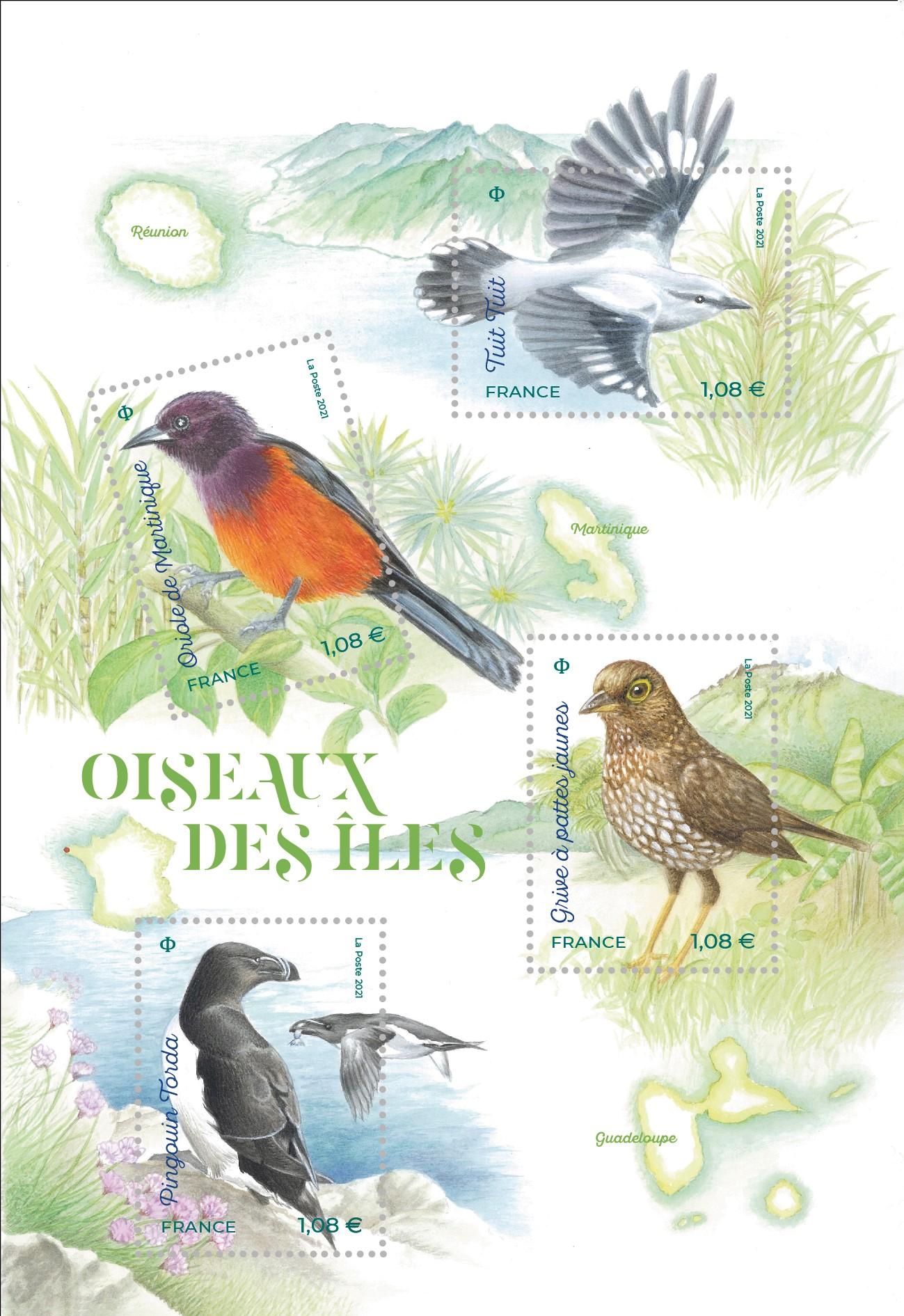 Oiseaux des îles