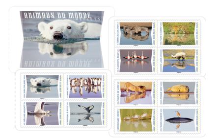 Carnet Reflets d'animaux